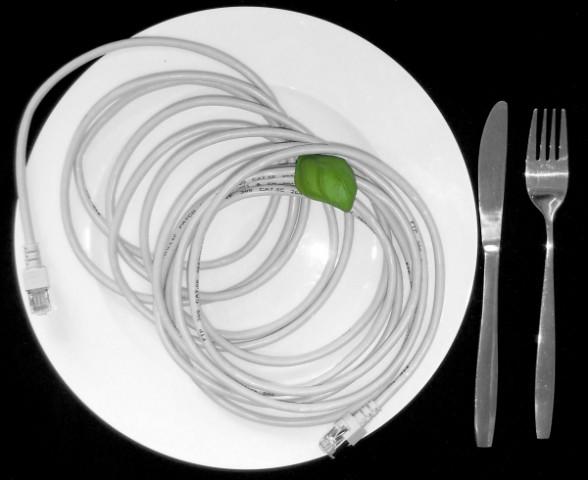 5m langes Netzwerkkabel auf Teller