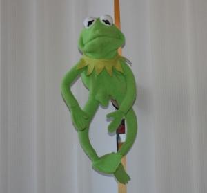 Ein grüner Frosch, professionell von Lisa durch den Lamellenvorhang gesteckt.